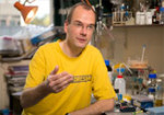 Mark van BreugelGroup LeaderMRC Molecular Laboratory of Molecular Biology, Cambridge